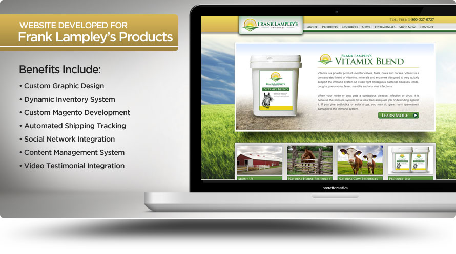 Web Design – Frank Lampley's Products